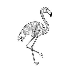 flamingo bird doodling coloring book vector image