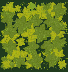Much green foliages vector