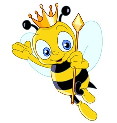queen bee vector image