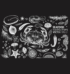 seafood and spices set vintage hand drawn on vector image