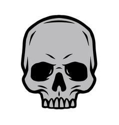 vintage tattoo concept human skull vector image
