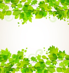 leaves vector image