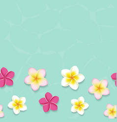 Tropical frangipani flowers in the water vector image