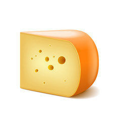 Gouda cheese isolated on white vector