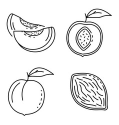 Peach icons set outline style vector