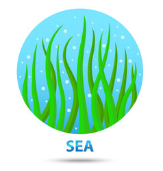 Sea nature icon vector