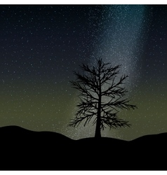 night sky and tree background vector image