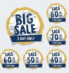 Big Sale tags with badges and labels vector