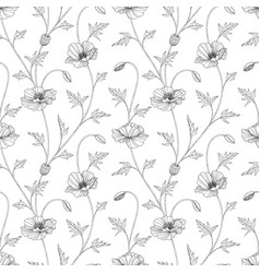 seamless pattern poppy floral hand drawn vector image