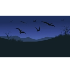 Silhouette of pterodactyl at night vector