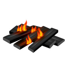 small camp fire icon realistic style vector image