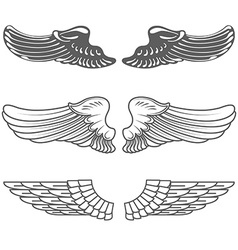 Set of wings isolated on white vector image