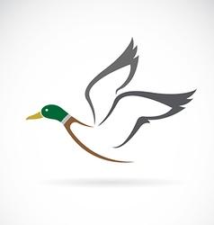 Wild duck design vector image vector image
