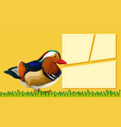 a duck on blank note vector image