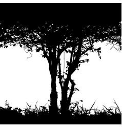 Bush detail silhouette vector