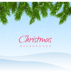 Christmas background with snow and fir tree border vector image