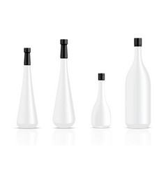 Mock up realistic white alcohol bottles and food vector