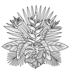 Tropical bouquet coloring page vector