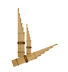 Musical Pan Flute Background vector image