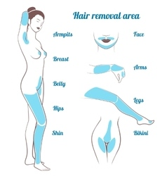 Area hair removal vector