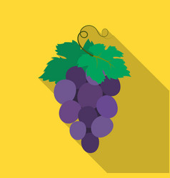 bunch of wine grapes icon in flate style isolated vector image