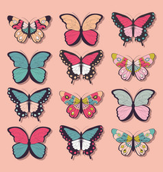 collection of twelve colorful butterflies vector image