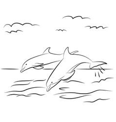dolphins drawn contour black coloring vector image