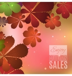 Fall sale design Enjoy autumn sales banner vector image