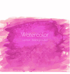 Magenta pink rose marble watercolor vector