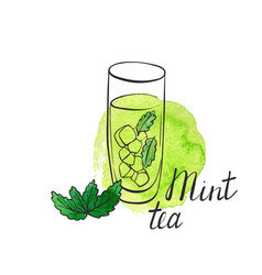 mint tea vector image
