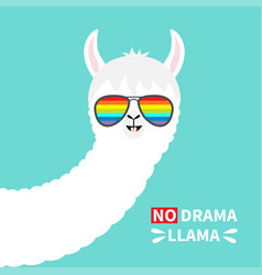 No drama llama face in rainbow glassess alpaca vector