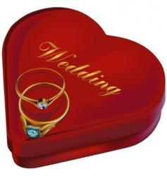 Wedding rings and box vector