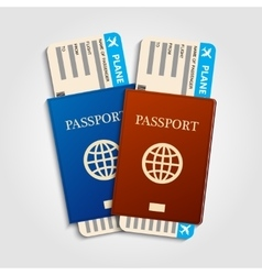 Passports with tickets vector image
