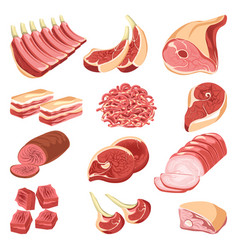 fresh meat cuts colorful collection on vector image
