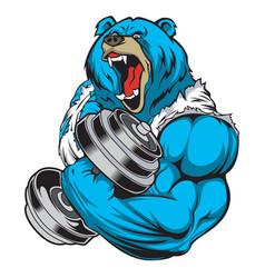 Bear strong dumbbell gym vector