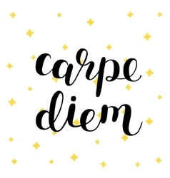 Carpe diem Seize the day vector