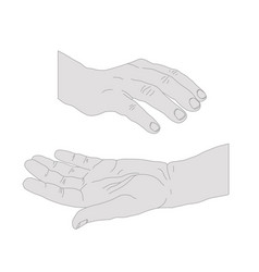 Drawn hands opened vector