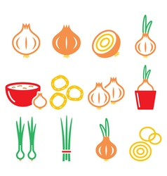 Onion spring onions colorful icons set vector