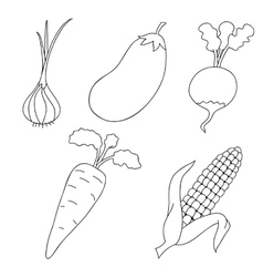 Ripe vegetables on a white background vector image