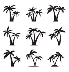set icons palm trees isolated on white vector image
