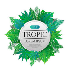 Tropical leaves round frame with place for text vector
