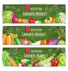 Vegetables healthy farmers food banners set vector