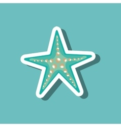 sea star blue beach design vector image