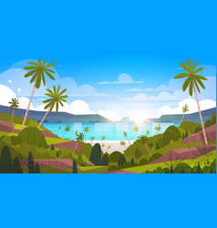 beautiful seaside landscape summer beach with palm vector image vector image