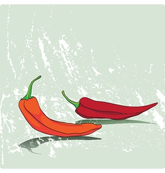card with peppers vector image