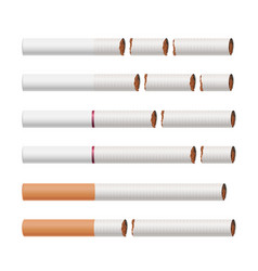 broken cigarettes smoking kills medical vector image