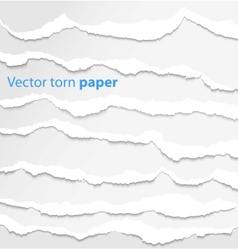 Collection white torn paper vector