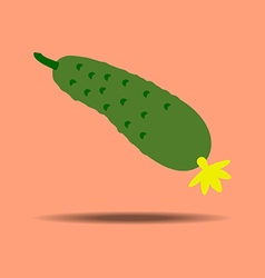 Cucumber vegetable icon vector image