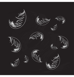 feather background vector image