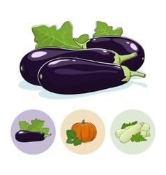 Icons Eggplant Pumpkin Zucchini vector image